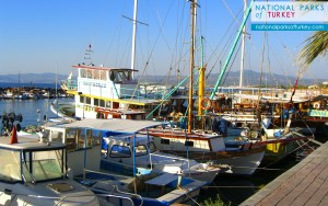 fishing_boats_at_guzelcamli_turkey_2