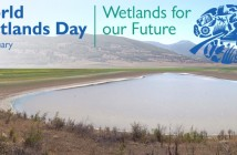 world_wetlands_day
